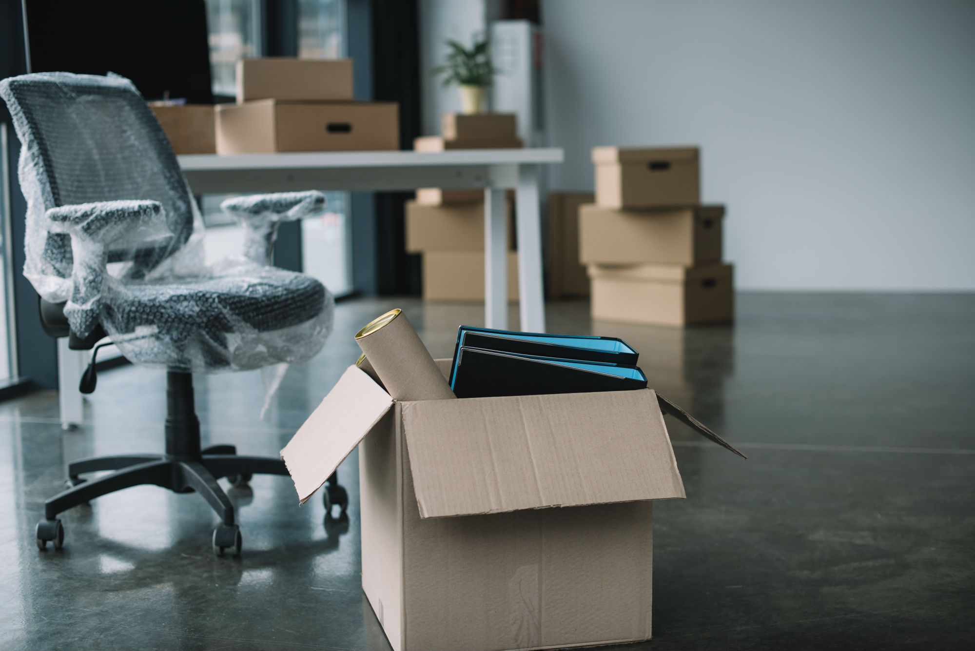 5 Essential Supplies You Will NEED for Your First Move